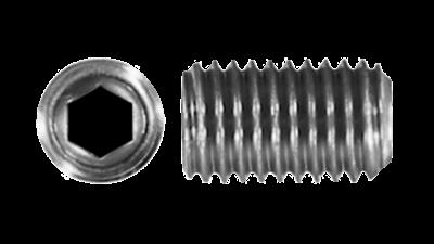 Stainless Steel Socket Grubscrew 304 316