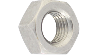 Stainless Steel Hex Nut P