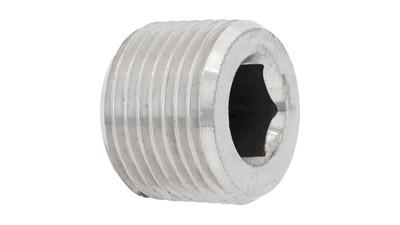 Stainless BSP Socket Pressure Plug